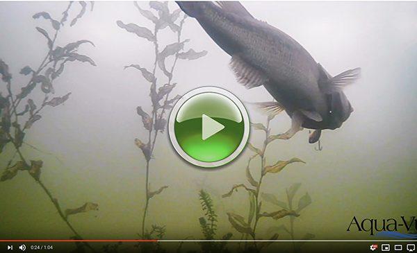Underwater Fish Camera Aqua-Vu