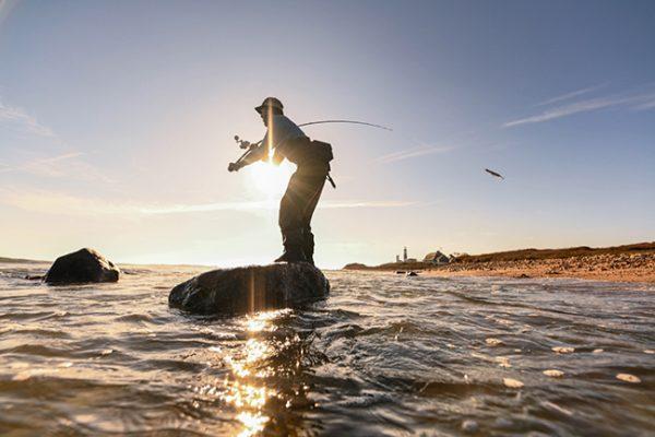 Surf Casting Angler