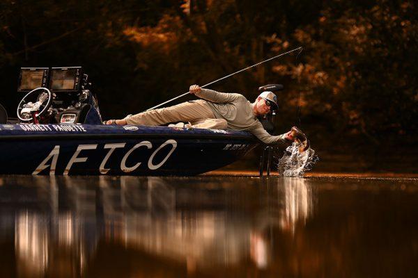 Bass Angler Lands Fish