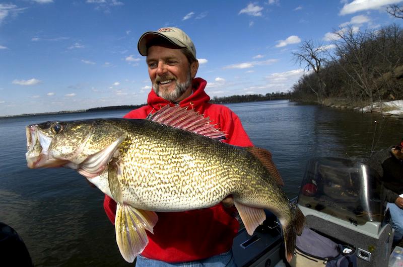 Al Lindner with Walleye