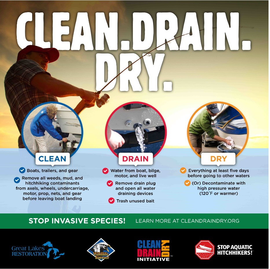 Clean Drain Dry Graphic