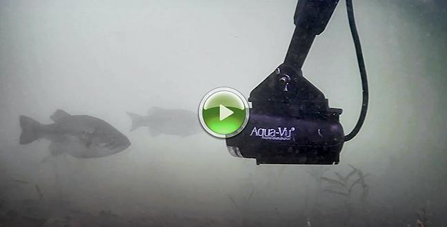 Aqua Vu Video