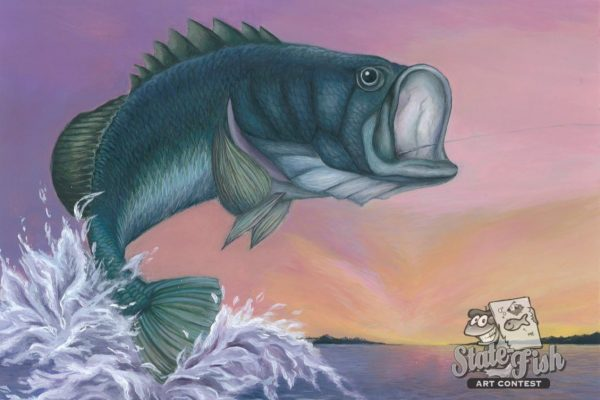 Bass Fish Art Painting