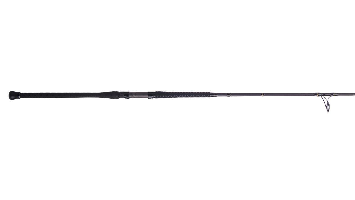 Penn Surf Fishing Rod