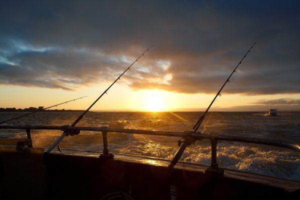 Saltwater Fishing Boat