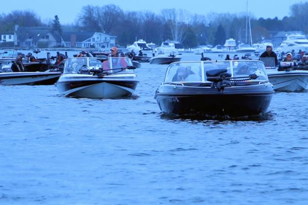 Bass Boats at Tournament
