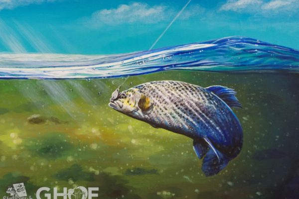 Guy Harvey Fish Artwork