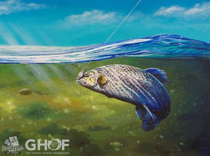 Guy Harvey Fish Artwork
