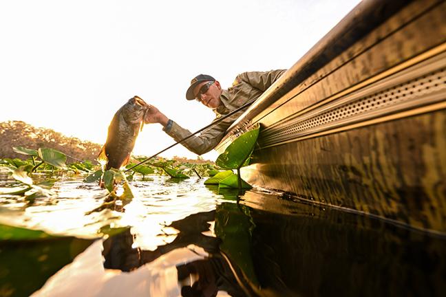 Angler Landing Largemouth Bass