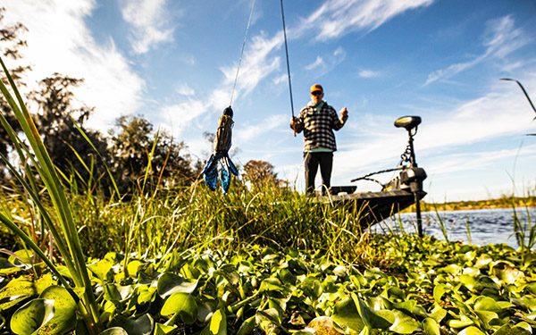 Angler Flips Bass Lure In Vegetation