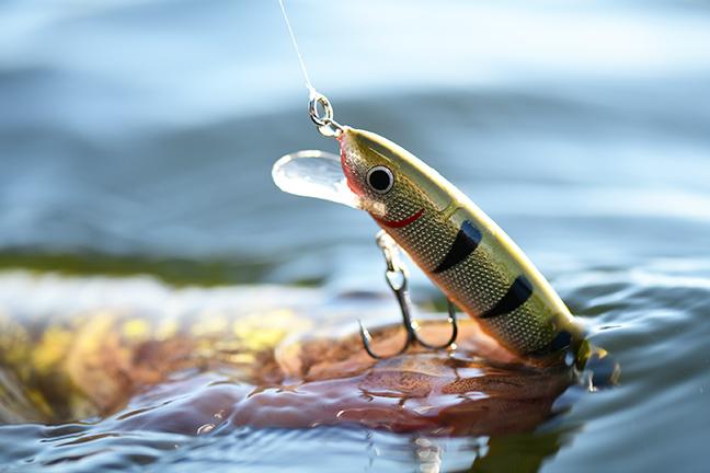 Northland Rumble Crankbait Fishing Lure