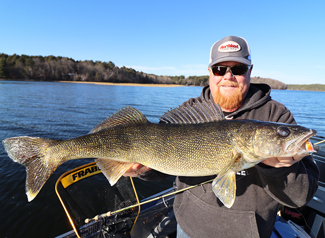 Angler Holds Walleye Caught on Crankbait