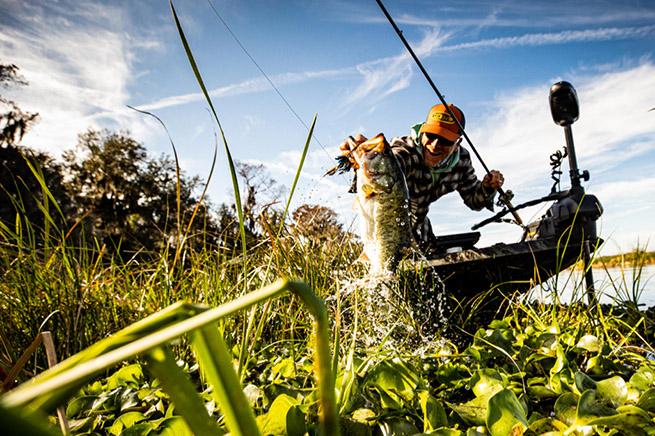 Angler landing bass
