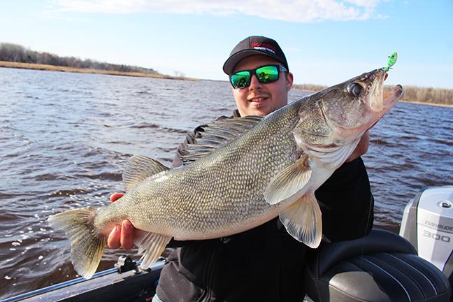 Nick Lindner Holds Up Walleye
