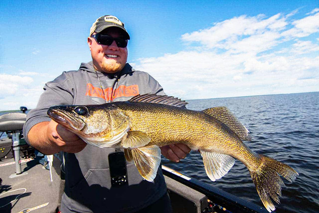 Angler Holding Walleye Caught on Jig