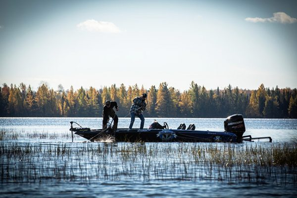 Anglers landing muskie